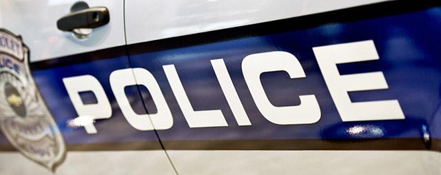 Police decal on car